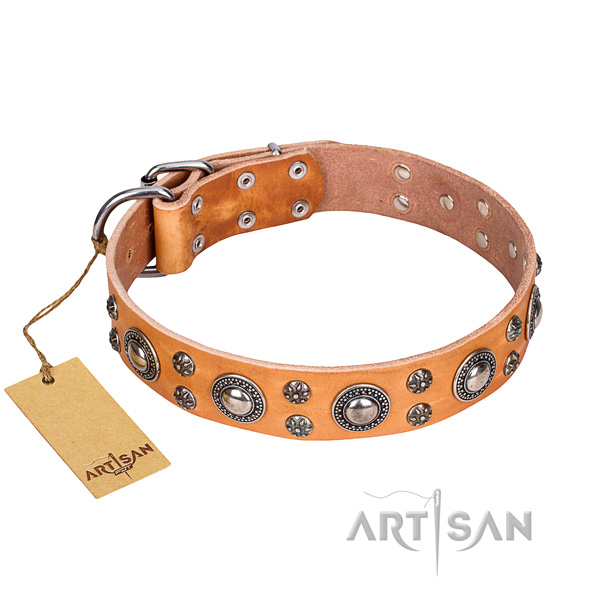 Remarkable full grain genuine leather dog collar for daily use