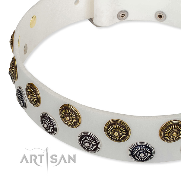 Genuine leather dog collar with significant embellishments