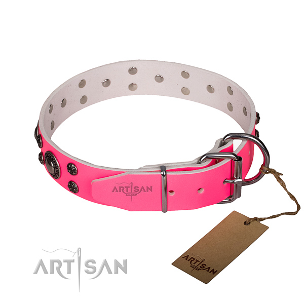 Walking genuine leather collar with strong buckle and D-ring