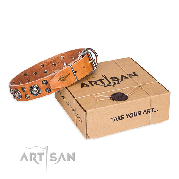 Designer full grain genuine leather dog collar for stylish walks