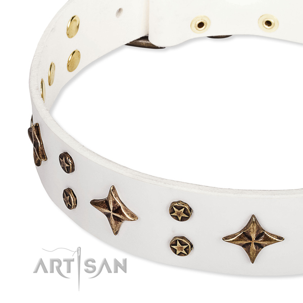 Full grain genuine leather dog collar with stunning adornments