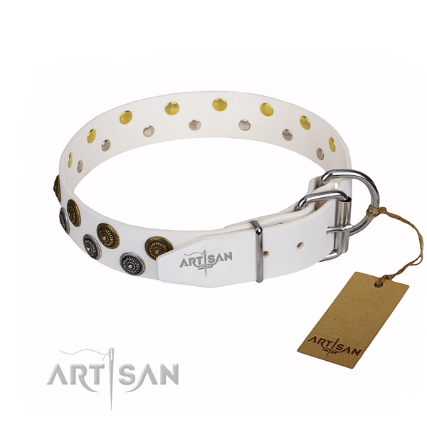 Everyday walking full grain natural leather collar with studs for your pet
