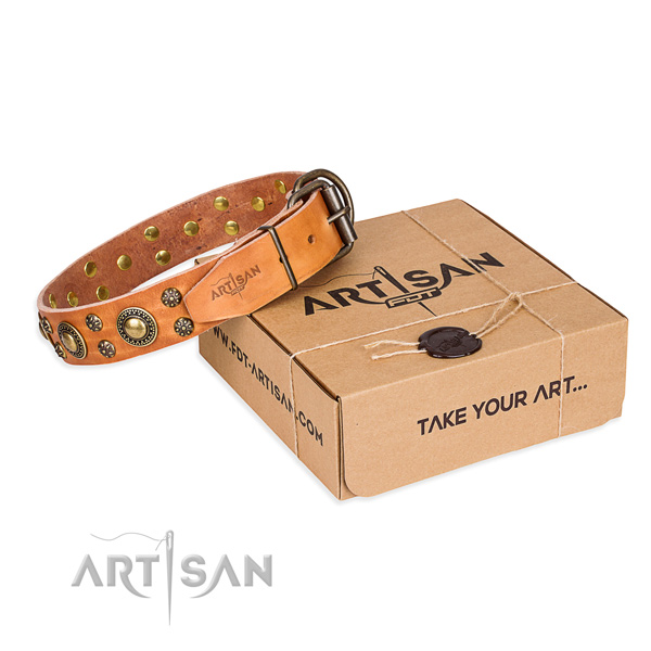 Full grain leather dog collar with adornments for stylish walking