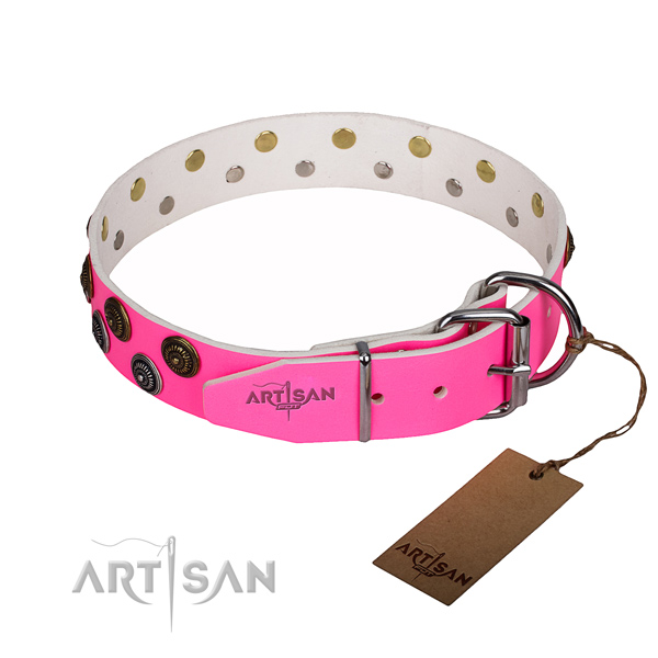 Everyday walking full grain natural leather collar with decorations for your doggie