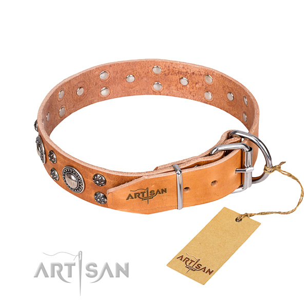 Stylish walking full grain leather collar with decorations for your four-legged friend