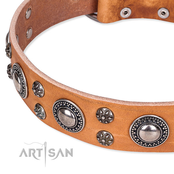 Everyday use full grain genuine leather collar with rust-proof buckle and D-ring