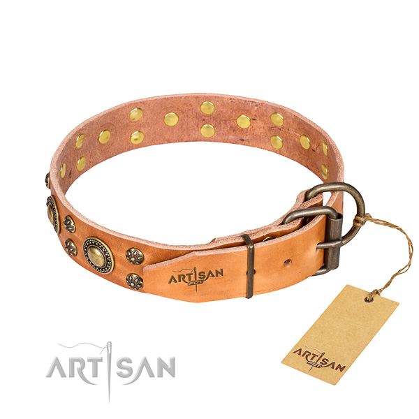 Daily use full grain genuine leather collar with embellishments for your canine