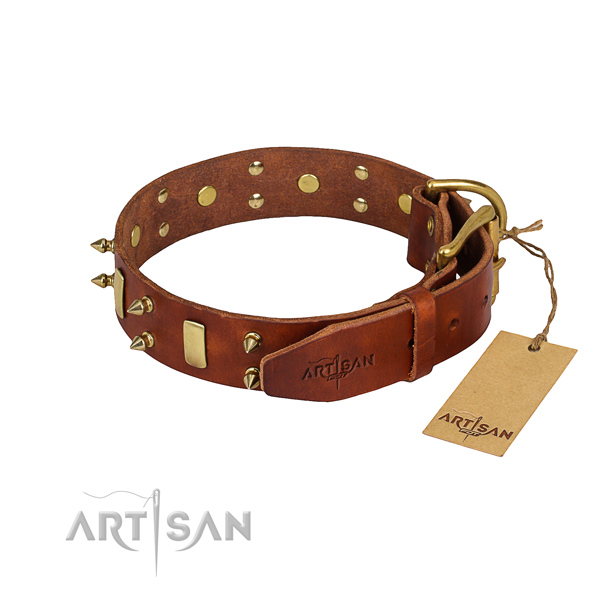 Indestructible leather dog collar with rust-resistant details