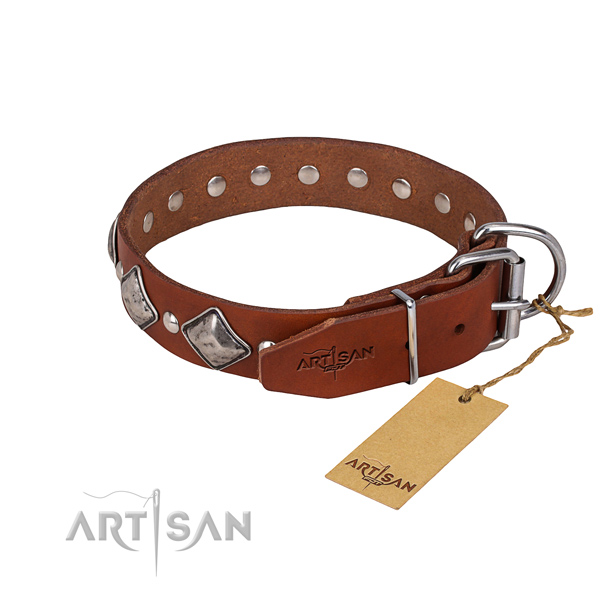 Sturdy leather dog collar with riveted hardware