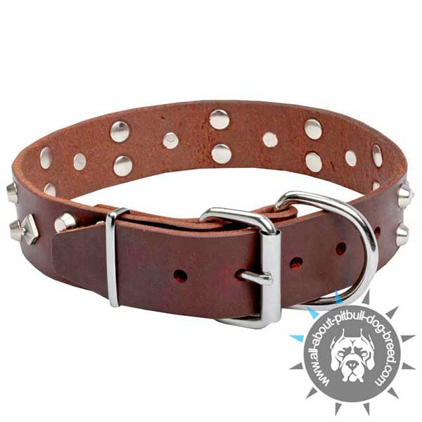 Posh brown Leather Pitbull Collar with Rust-proof Fittings