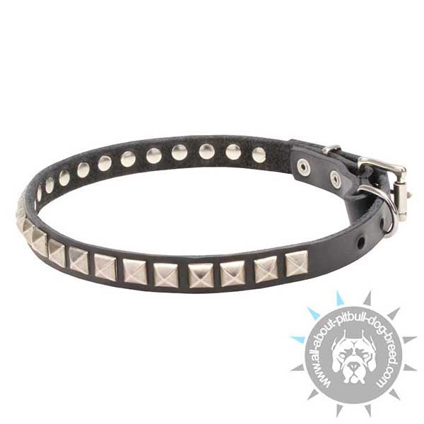 Elegant Studded Leather Dog Collar
