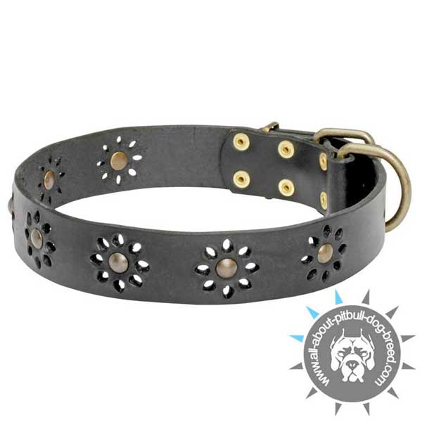Adorned Collar Made of Genuine Black Leather
