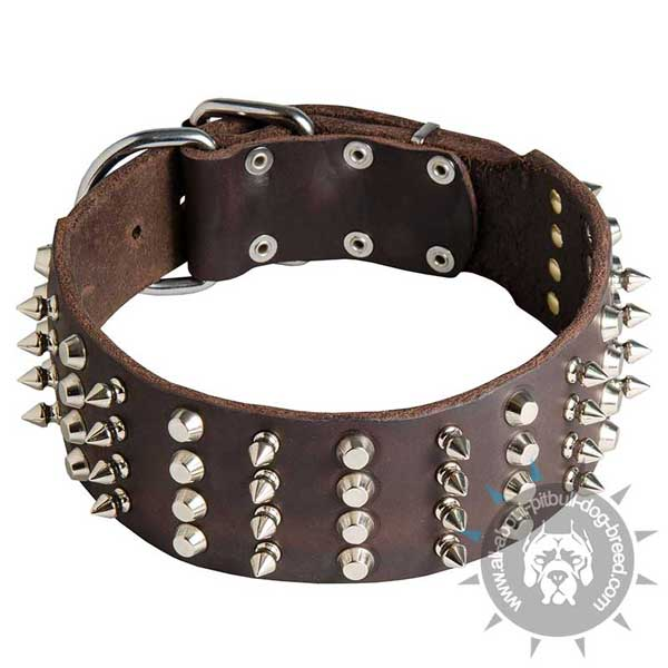 Pitbull Leather Collar with Nickel Spikes and Cones