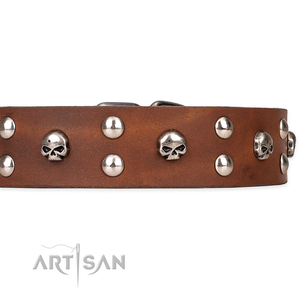 Full grain genuine leather dog collar with smoothed leather surface