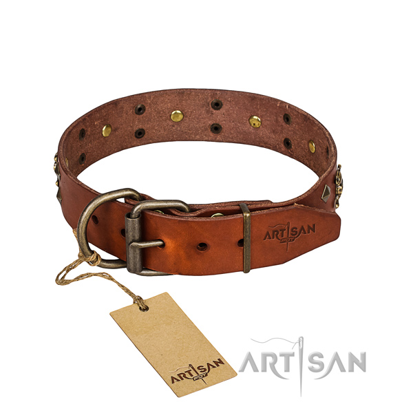 Reliable leather dog collar with brass plated fittings