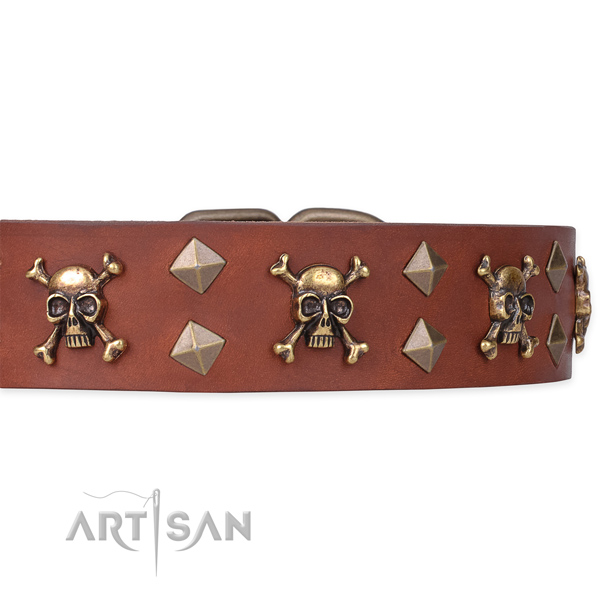 Everyday leather dog collar for walking