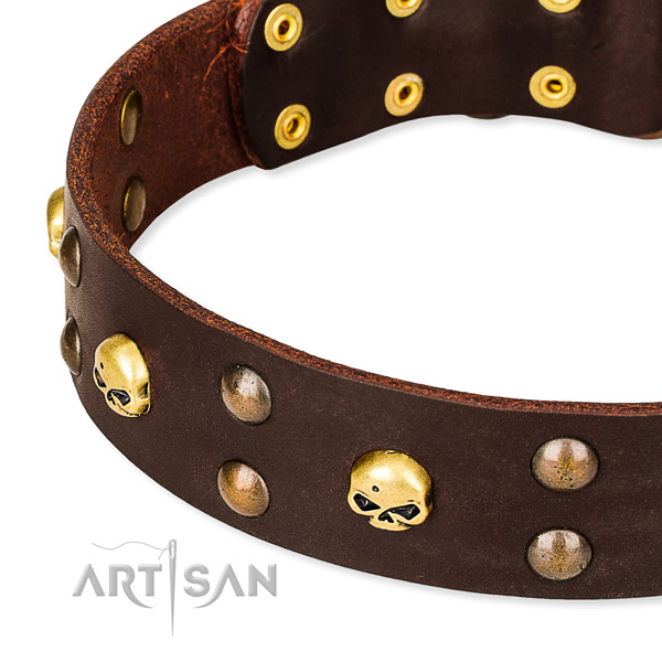 Top notch leather dog collar for fail-safe use