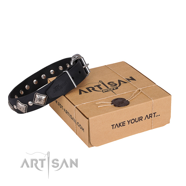 Day-to-day leather dog collar with extraordinary decorations