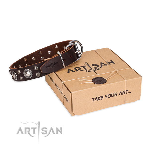 Day-to-day leather dog collar with luxurious embellishments