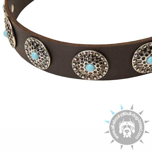 Elegant leather dog collar with blue stones