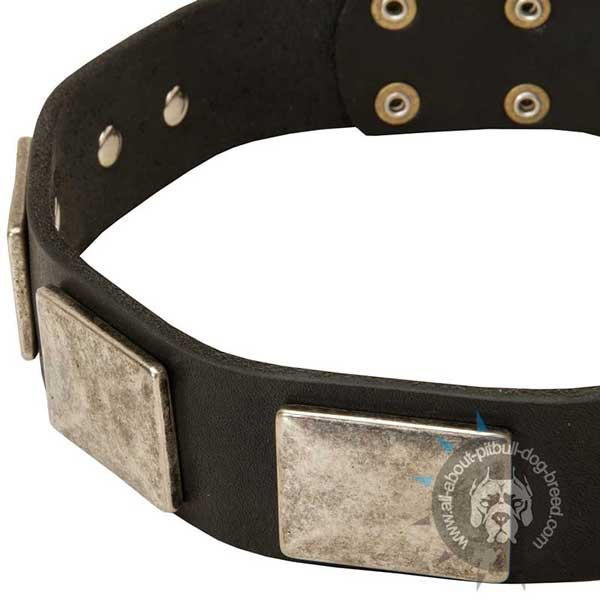 Handcrafted Leather Dog Collar with nickel-plated Plates