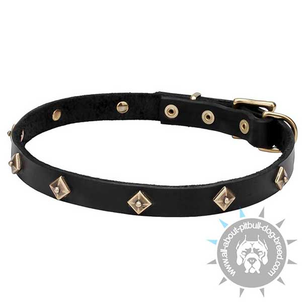 Narrow Leather Collar with Brass Rhombi Studs