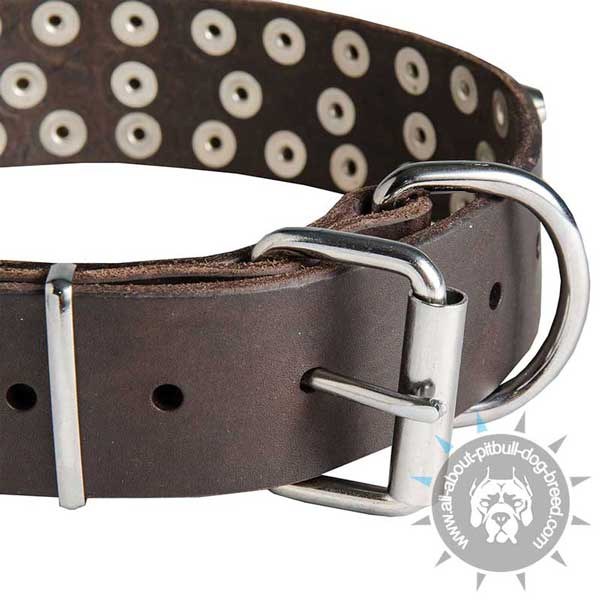 Durable Nickel Hardware on Leather Collar