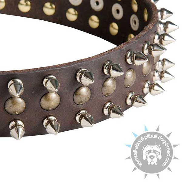 Leather Pitbull Collar with Studs and Spikes