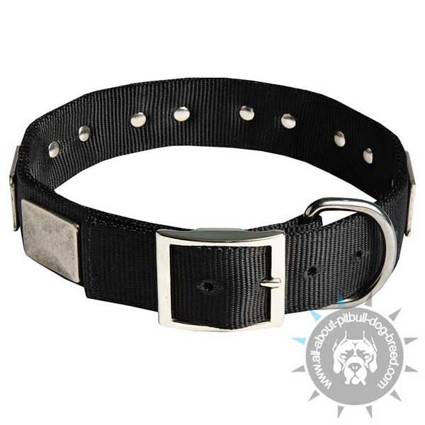 Nylon collar with rustproof plates