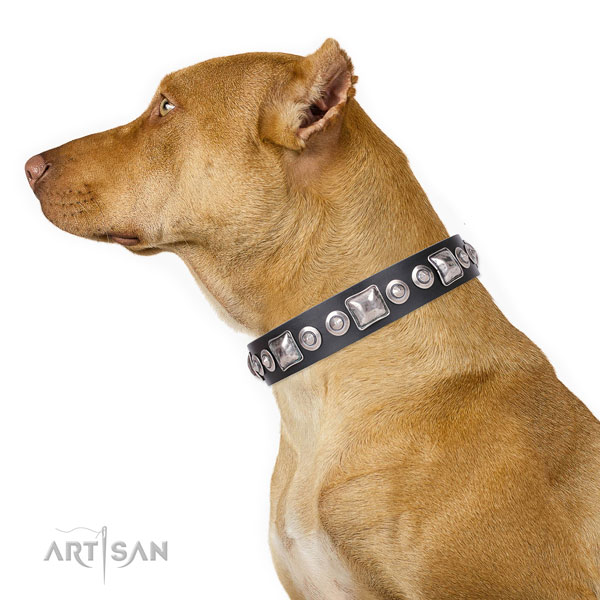 Stylish design adorned natural leather dog collar for comfy wearing