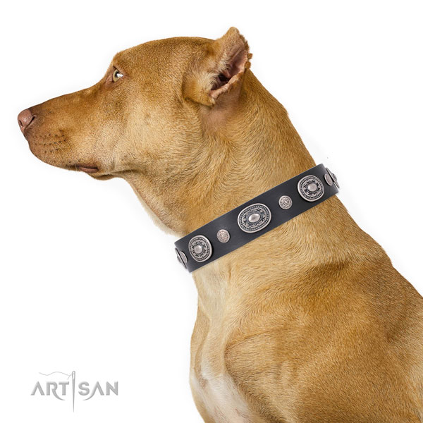 Rust-proof buckle and D-ring on full grain leather dog collar for stylish walks