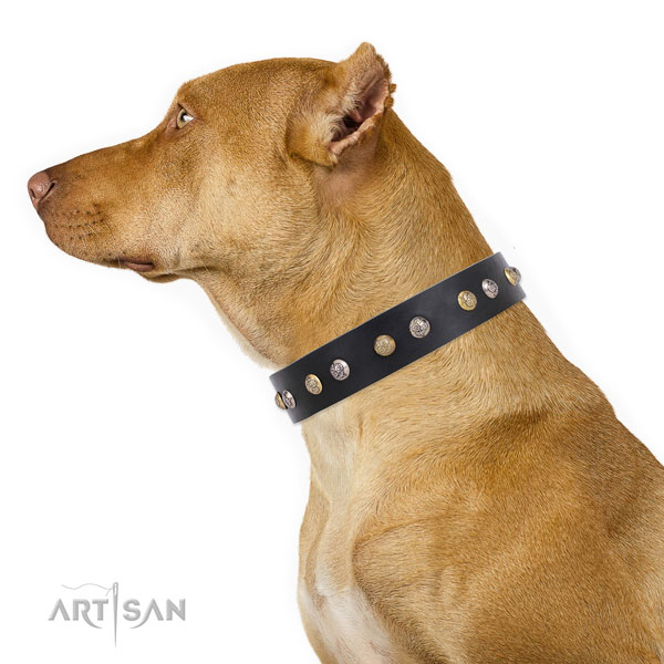 Full grain leather dog collar with rust resistant buckle and D-ring for easy wearing
