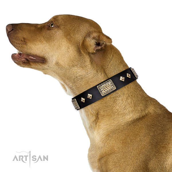 Reliable easy wearing dog collar of leather