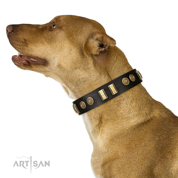 Corrosion proof D-ring on full grain genuine leather dog collar for handy use