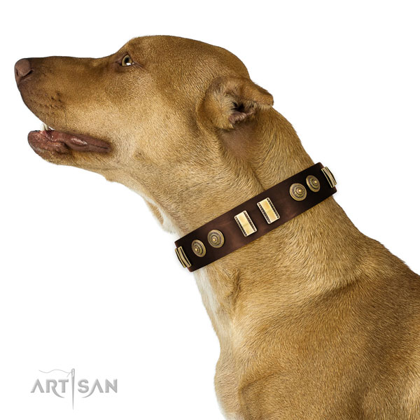 Reliable traditional buckle on genuine leather dog collar for daily walking
