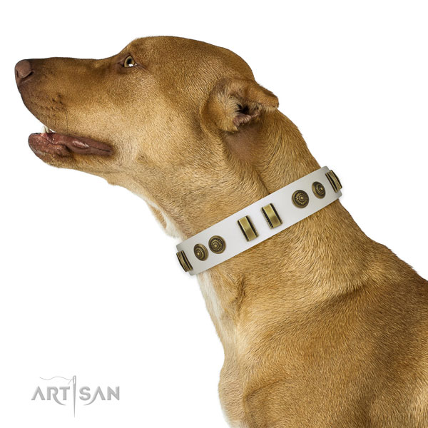 Rust-proof D-ring on natural leather dog collar for fancy walking