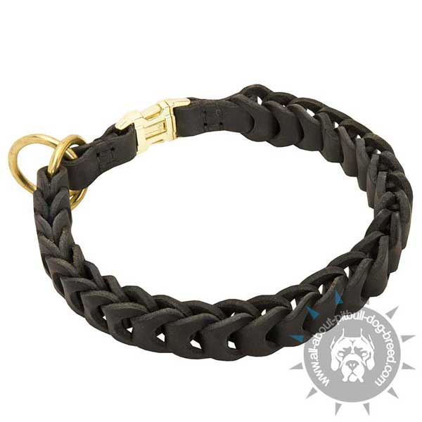 Braided Leather Pitbull Choke Collar Secured near Buckle with Stitching