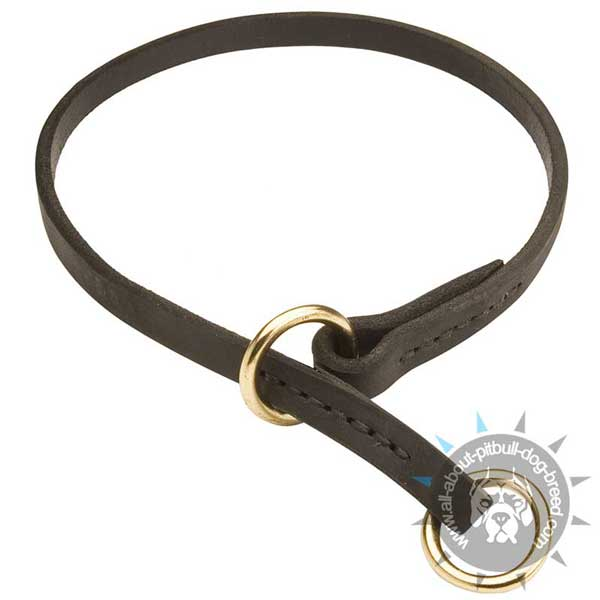 Leather Pitbull Choke Collar with Stitched Brass Rings