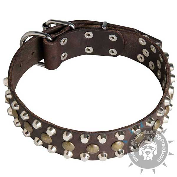 Decorated Leather Pitbull Collar for Daily Walking