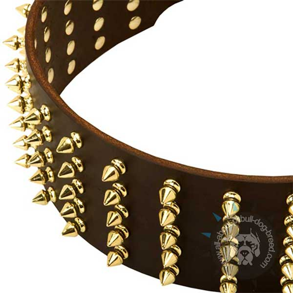 Wide Leather Pitbull Collar Spiked in 5 Rows