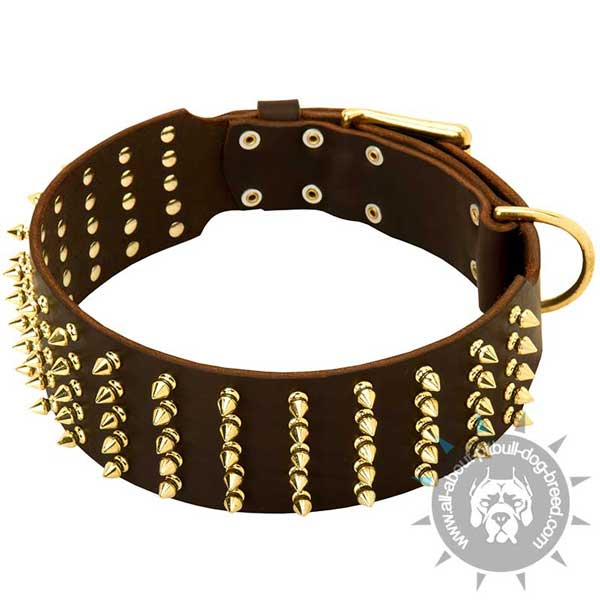 Leather Pitbull Collar Extra Wide and Spiked