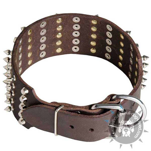 Durable Buckled Leather Pitbull Collar Extra Wide
