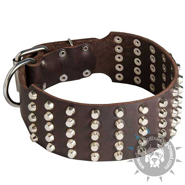 Extra Wide Leather Pitbull Collar with Riveted Hardware