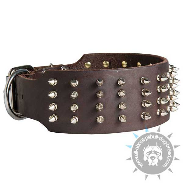 Spiked Leather Pitbull Collar