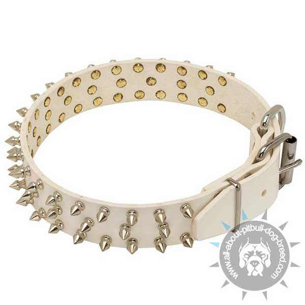Spiked White Leather Pitbull Collar with Strong Buckle