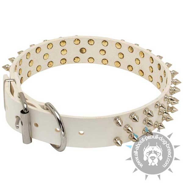 Spiked White Leather Pitbull Collar D-Ring for Leash Attachment