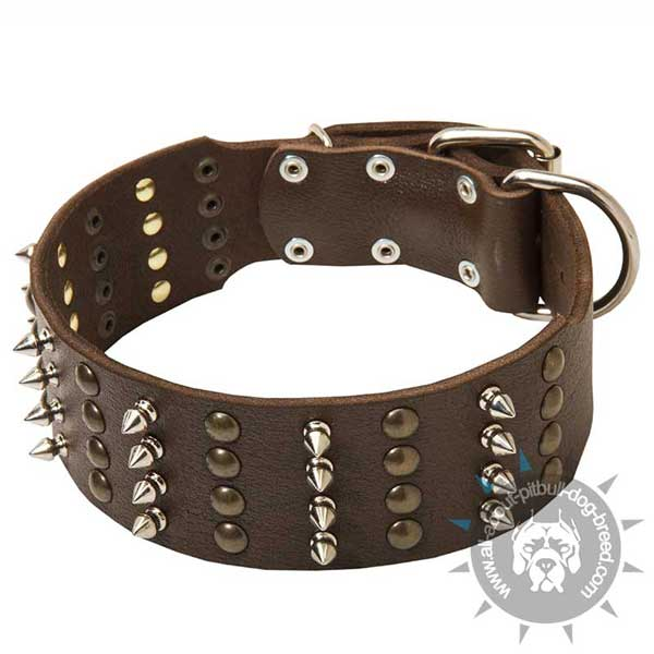 Wide Buckled Leather Pitbull Collar with Riveted Fittings