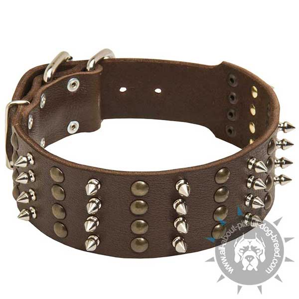 Wide Leather Pitbull Collar with Brass Half-Ball Studs and Nickel Plated Spikes