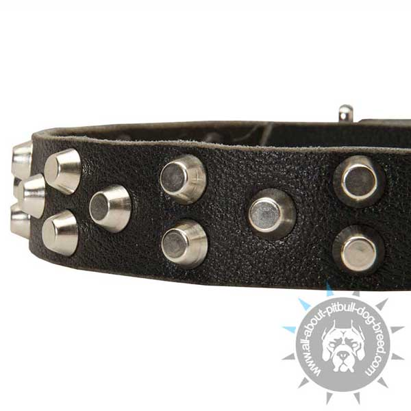 Leather Pitbull Collar with 3 Rows Nickel Pyramids