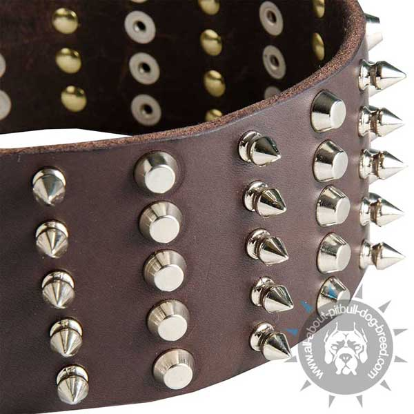 Leather Pitbull Collar Decorated with Spikes and Cones